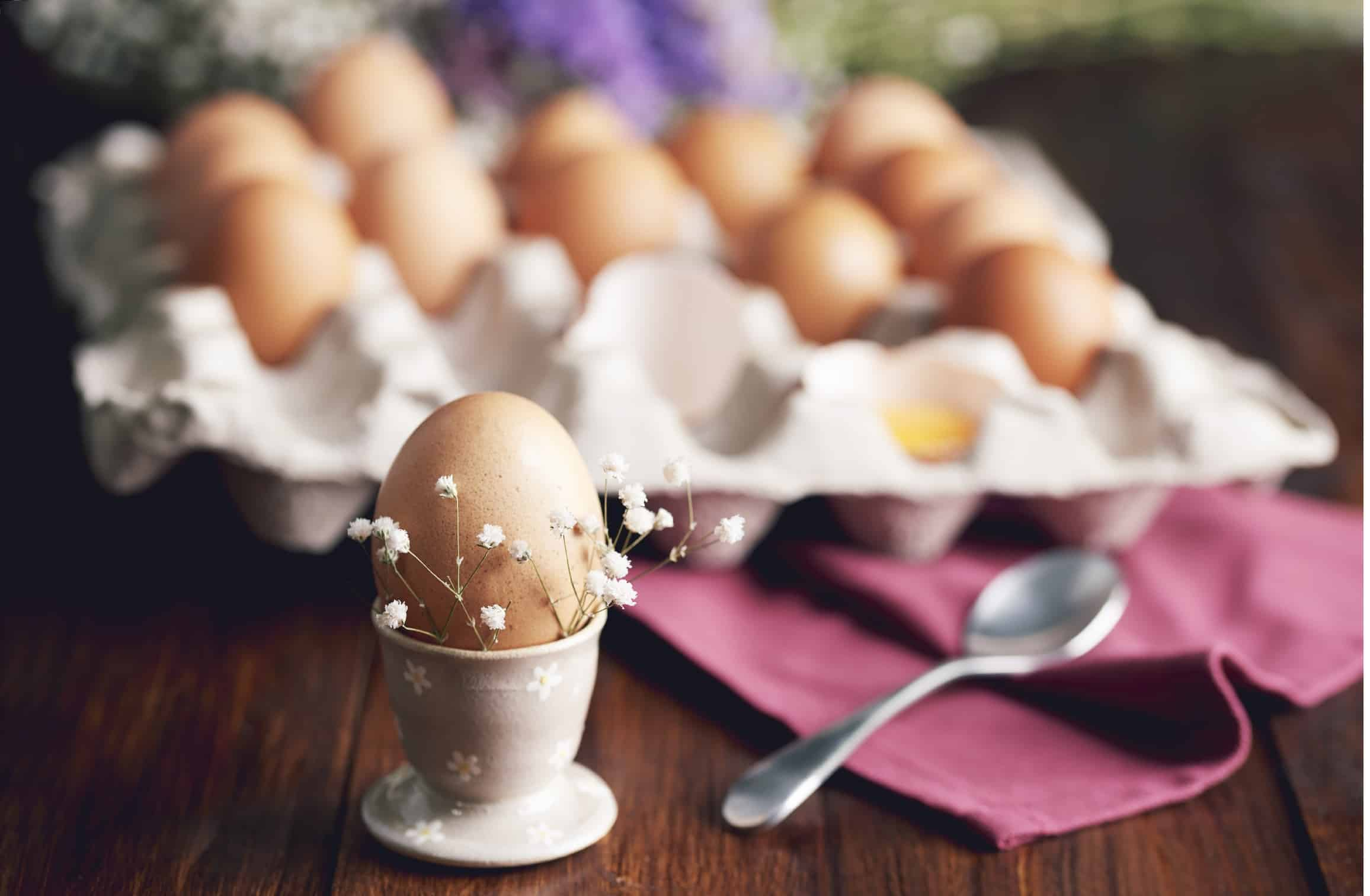 A Guide to the Egg Diet: Should You Try It Too?