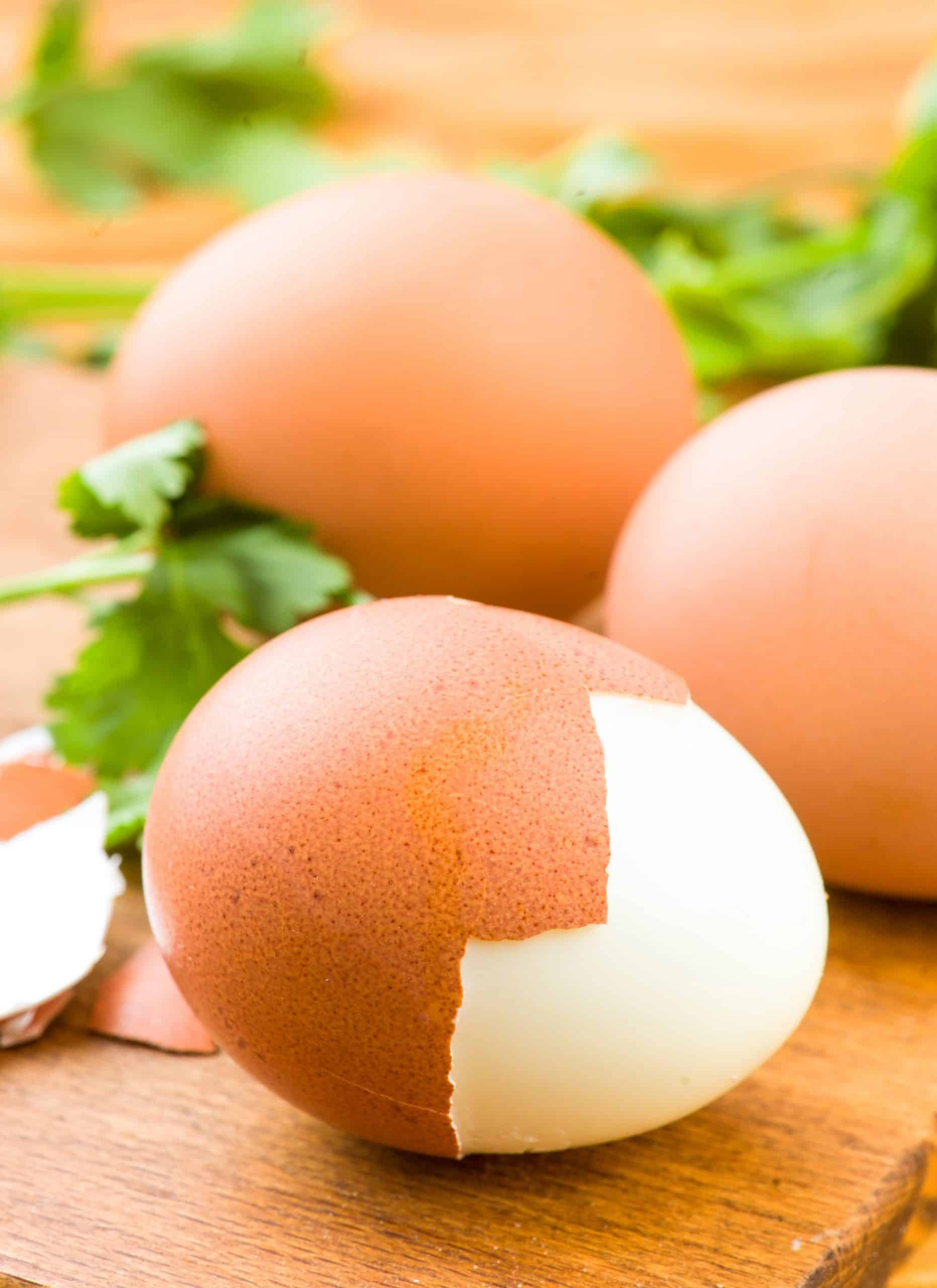 protein foods for good health